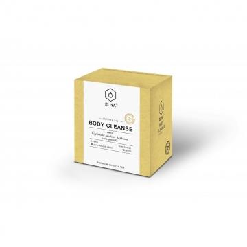 Body Cleanse - bylinná směs sarsaparilly, cejlonské skořice a kurkumy
